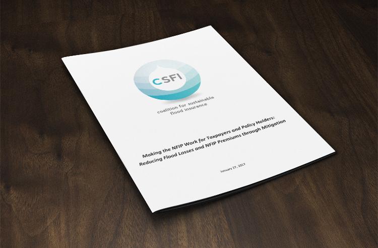 CSFI Whitepaper